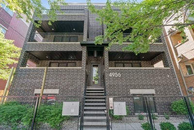Chicago Condo/Townhouse New: 4956 North Western Avenue #3N