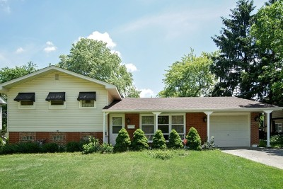 Hoffman Estates Single Family Home New: 1645 Pierce Road