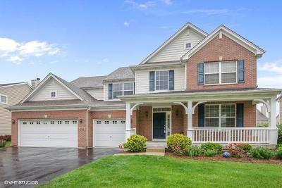 Elgin Single Family Home New: 2032 Padua Drive