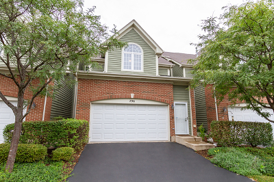 Palatine Condo/Townhouse New: 296 West Fairview Circle