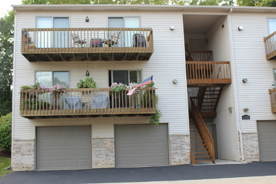 South Elgin Condo/Townhouse For Sale: 330 Woodridge Circle #C