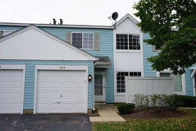 Naperville Condo/Townhouse New: 1584 Normantown Road #1584