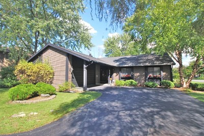 Roselle Single Family Home For Sale: 630 Lake View Court