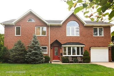 Mount Prospect Single Family Home For Sale: 117 South Bobby Lane