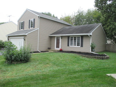 Warrenville Single Family Home For Sale: 30w261 Mack Road