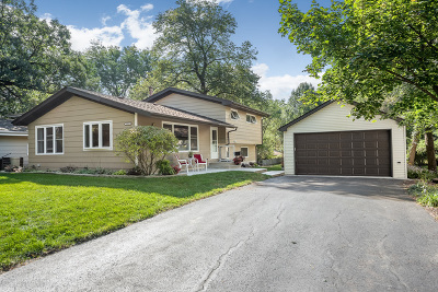 Downers Grove Single Family Home For Sale: 1313 Blanchard Street