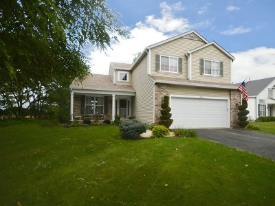 Oswego Single Family Home For Sale: 813 Blossom Lane