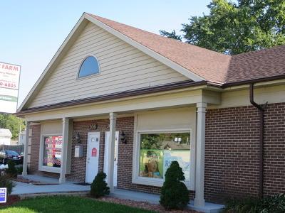Naperville Commercial For Sale: 302 East Ogden Avenue
