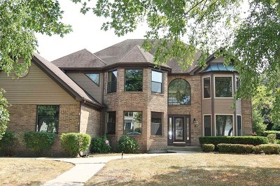 Palatine Single Family Home For Sale: 965 West Bombay Way