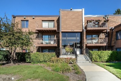 Schaumburg Condo/Townhouse For Sale: 705 Tipperary Court #1B