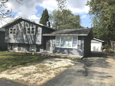 Round Lake Single Family Home For Sale: 310 South Rosedale Court