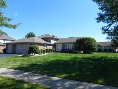 New Lenox Single Family Home For Sale: 750 Bluestone Bay Drive