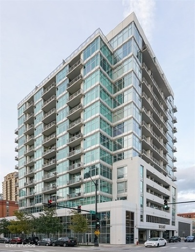Chicago Condo/Townhouse New: 50 East 16th Street #501