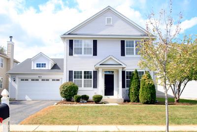 Oswego Single Family Home For Sale: 413 Frankfort Avenue