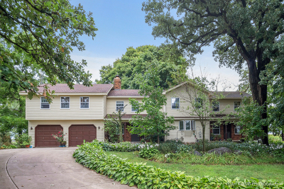 Elburn Single Family Home For Sale: 1s614 Dauberman Road
