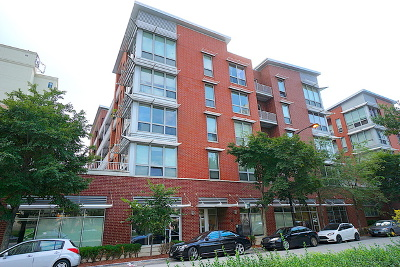 Chicago Condo/Townhouse New: 2025 South Indiana Avenue #305