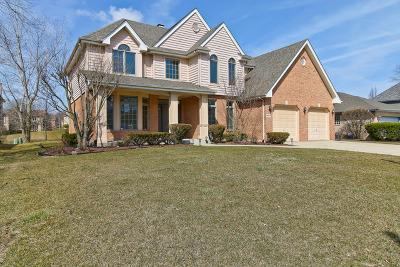 Darien Single Family Home For Sale: 8924 Kilkenny Drive