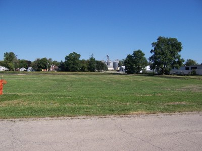 Elburn Residential Lots & Land For Sale: 300 South Street