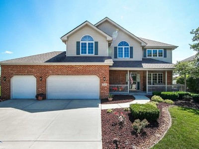New Lenox Single Family Home For Sale: 2270 Cattleman Drive