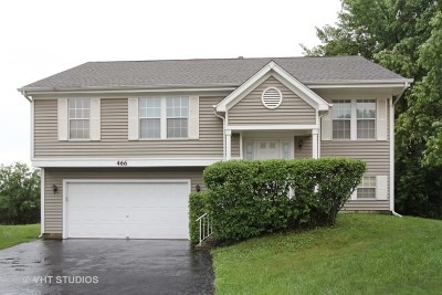 Lake Zurich Single Family Home For Sale: 466 Cromwell Court