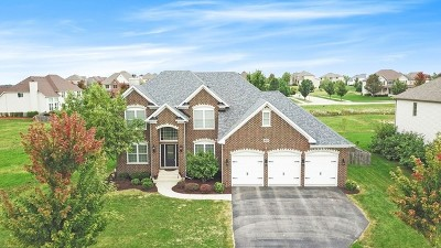 Plainfield Single Family Home For Sale: 13009 Timber Wood Circle