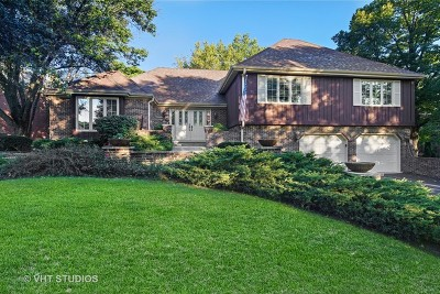 Oak Brook Single Family Home For Sale: 134 Saddle Brook Drive