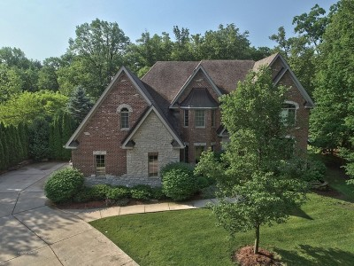 New Lenox Single Family Home For Sale: 13111 Steeplechase Drive
