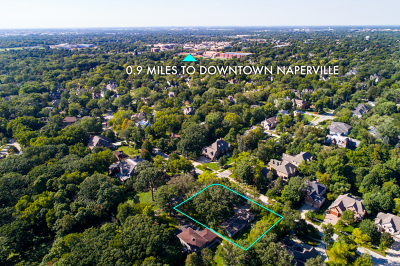 Naperville Single Family Home For Sale: 806 South Julian Street
