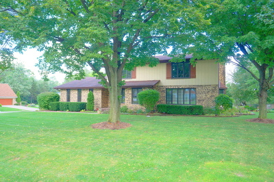 Olympia Fields Single Family Home For Sale: 3632 Parthenon Way