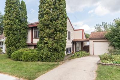 Warrenville Single Family Home For Sale: 30w008 Danbury Drive