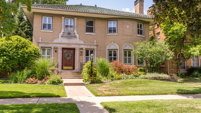 Oak Park Single Family Home For Sale: 1041 North East Avenue