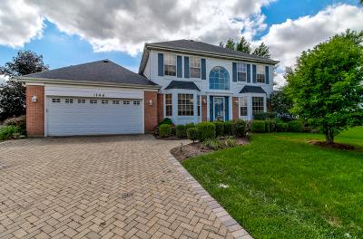 Carol Stream Single Family Home For Sale: 1146 Winding Glen Drive