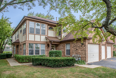 Streamwood Condo/Townhouse For Sale: 2012 Quaker Hollow Lane