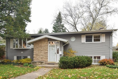 Arlington Heights Single Family Home For Sale: 715 North Douglas Avenue