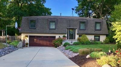 New Lenox Single Family Home For Sale: 157 Kimber Drive