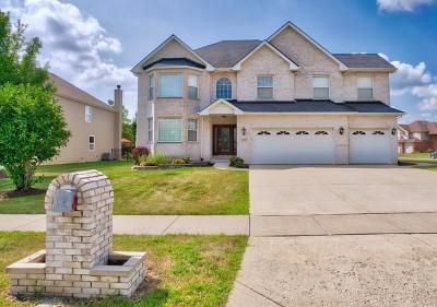 Plainfield Single Family Home For Sale: 24807 Emerald Avenue