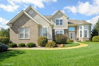 Spring Grove Single Family Home For Sale: 9003 Deborah Lane