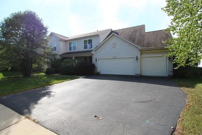 Bolingbrook Single Family Home For Sale: 2183 Kemmerer Lane