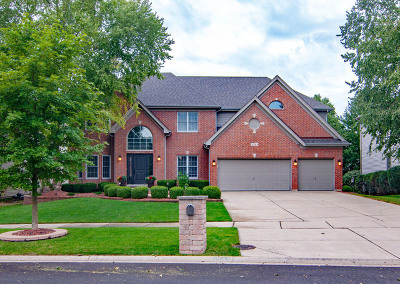 Naperville Single Family Home New: 3543 Stackinghay Drive