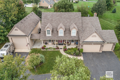 Plainfield Single Family Home For Sale: 25958 West Karen Drive