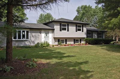 St. Charles Single Family Home For Sale: 7n298 Longridge Road