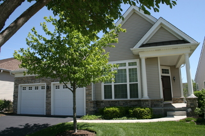 Elgin Single Family Home For Sale: 3844 Valhalla Drive