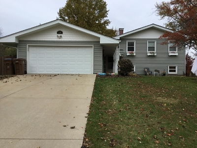 Glen Ellyn Single Family Home For Sale: 21w558 Huntington Road