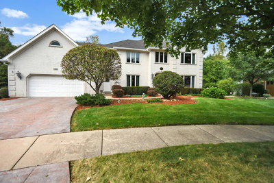 Naperville Single Family Home For Sale: 2081 Persimmon Court
