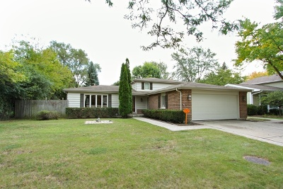 Libertyville Single Family Home For Sale: 1033 Tamarack Lane