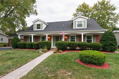 St. Charles Single Family Home For Sale: 506 Wing Lane