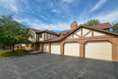 Palos Heights Condo/Townhouse For Sale: 7652 West Golf Drive #1A