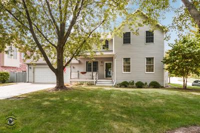 New Lenox Single Family Home For Sale: 419 North Cedar Road