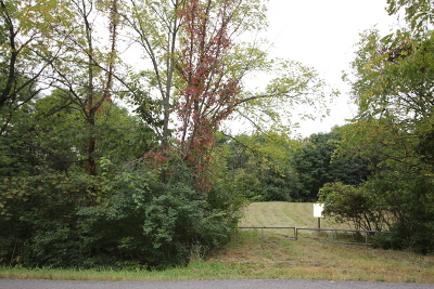 New Lenox Residential Lots & Land For Sale: 1007 North Vine Street