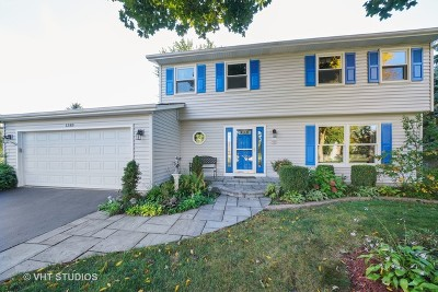 Naperville Single Family Home For Sale: 1283 Leverenz Road
